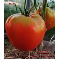 Семена томата Бычье сердце минусинское