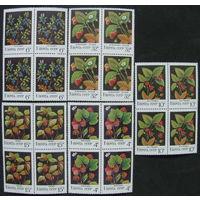 СССР 1982 Дикорастущие ягоды кварт