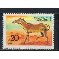 Туркменистан 1992 Кулан #2**