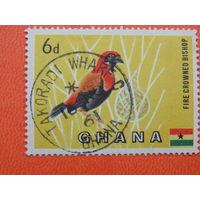 Гана 1961г.  Птицы.