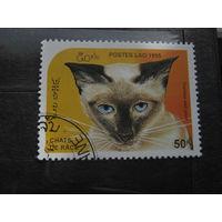 Марки, кошка, Лаос, 1995