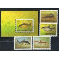 Киргизия 1994 Рыбы Полная Бл 6 #44-7,48**