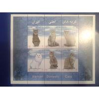 Иран 2004 Кошки блок Mi-7,0 евро