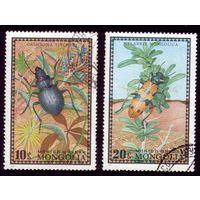2 марки 1972 год Монголия Жуки 685-686