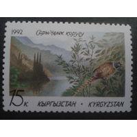 Киргизия 1992 Природа, птица