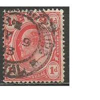 Трансваль. Король Эдуард VII. 1905г. Mi#132.
