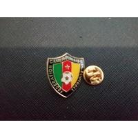 Федерация футбола Камеруна