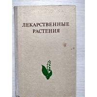 Лекарственные растения (растения-целители)