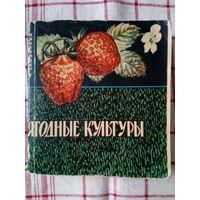 """Т.Самойлова """"Ягодные культуры"""" 1968 г."""