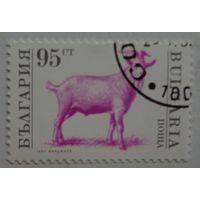 Болгария.1992.козел