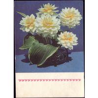 1971 год В.Суханов Цветы