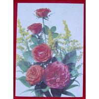 Роза. Подписанная. 1990 года. Дергилева.