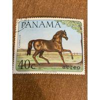 Панама 1967. Домашние животные. Caballo. Марка из серии