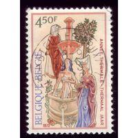1 марка 1973 год Бельгия 1736