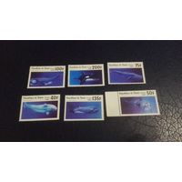 Бенин, киты, дельфины, акулы, распродажа
