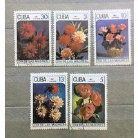 Куба.1987г. Цветы.
