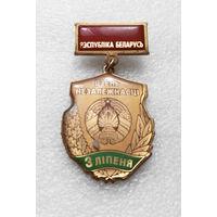 Медаль. День Независимости 3 июля Республика Беларусь. Тяжелая #0056