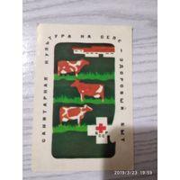 Календарик 1984 25.000 т