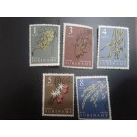 Суринам 1961 автономия Нидерландов Растения