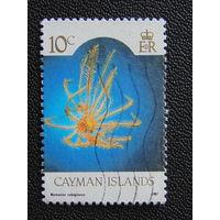 Британские Каймановы острова 1987 г.