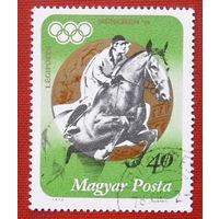 Венгрия. Спорт. ( 1 марка ) 1973 года.