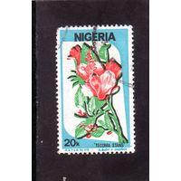 Нигерия.Ми-479. Цветы.Tecoma stans. Серия: Культура, природа и экономика