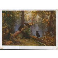 """Открытка 1958г. по картине И.И. Шишкина """"Утро в сосновом лесу"""""""