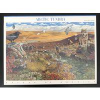2003 Природа Америки - Арктическая тундра - самоклеющиеся