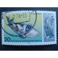 Берлин 1977 ископаемая фауна Михель-0,6 евро гаш.