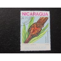 Никарагуа 1988г. Насекомые.