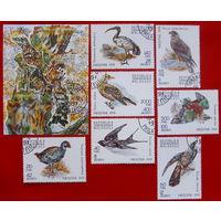 Мадагаскар. Птицы. ( Блок и 7 марок ) 1991 года.