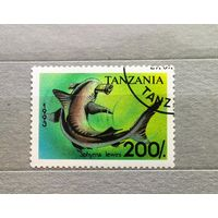 Танзания.1993г.Фауна.