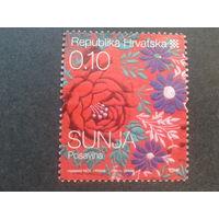 Хорватия 2008 стандарт, прикладное искусство
