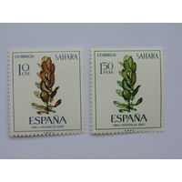 Испанская Сахара 1967 г.