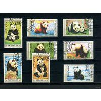 Монголия 1990. Панды. Полная серия