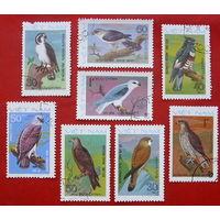 Вьетнам. Хищные птицы. ( 8 марок ) 1982 года.