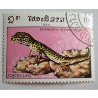 Лаос 1984. Ящерица