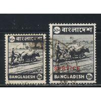 Бангладеш 1973-76 Пахарь Стандарт Служебная #60,S3
