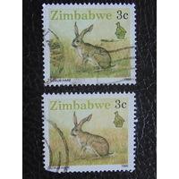 Зимбабве 1990г. Фауна.