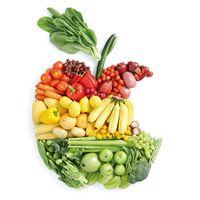 Курсовая - Комплексное исследование рынка-основа коммерческой деятельности на примере фруктов и овощей - Маркетинговые исследования