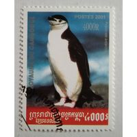 Камбоджа 2001. Пингвин