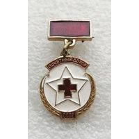 Почетный донор СССР (маленький). Медицина. Здравоохранение #0124-OP03