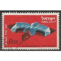 Израиль. Авиапочта. Красноклювая альцеона. 1963г. Mi#271.