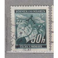 Германия рейх  Богемия и Моравия Местные мотивы 1940 г флора  лот 5    3