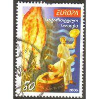Грузия 2005. Европа