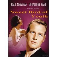 Сладкоголосая птица юности / Sweet Bird of Youth (Пол Ньюман) DVD9