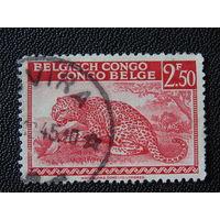 Бельгийское Конго 1942/43 г.г.