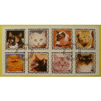 Экваториальная Гвинея. Кошки( 8 марок ) 1978 года.