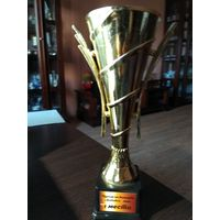 Кубок Турнир на бильярде 1 Место 2015 год.
