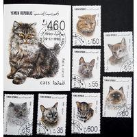 Йемен 1990  г. Кошки. Фауна, полная серия из 7 марок + Блок #0212-Ф1P48